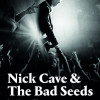 Nick Cave and the Bad Seeds Mexico 2018