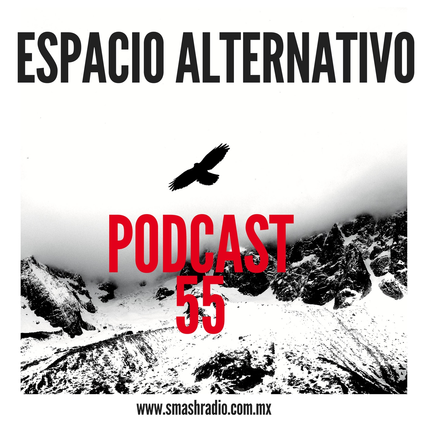 ESPACIO ALTERNATIVO POD 55