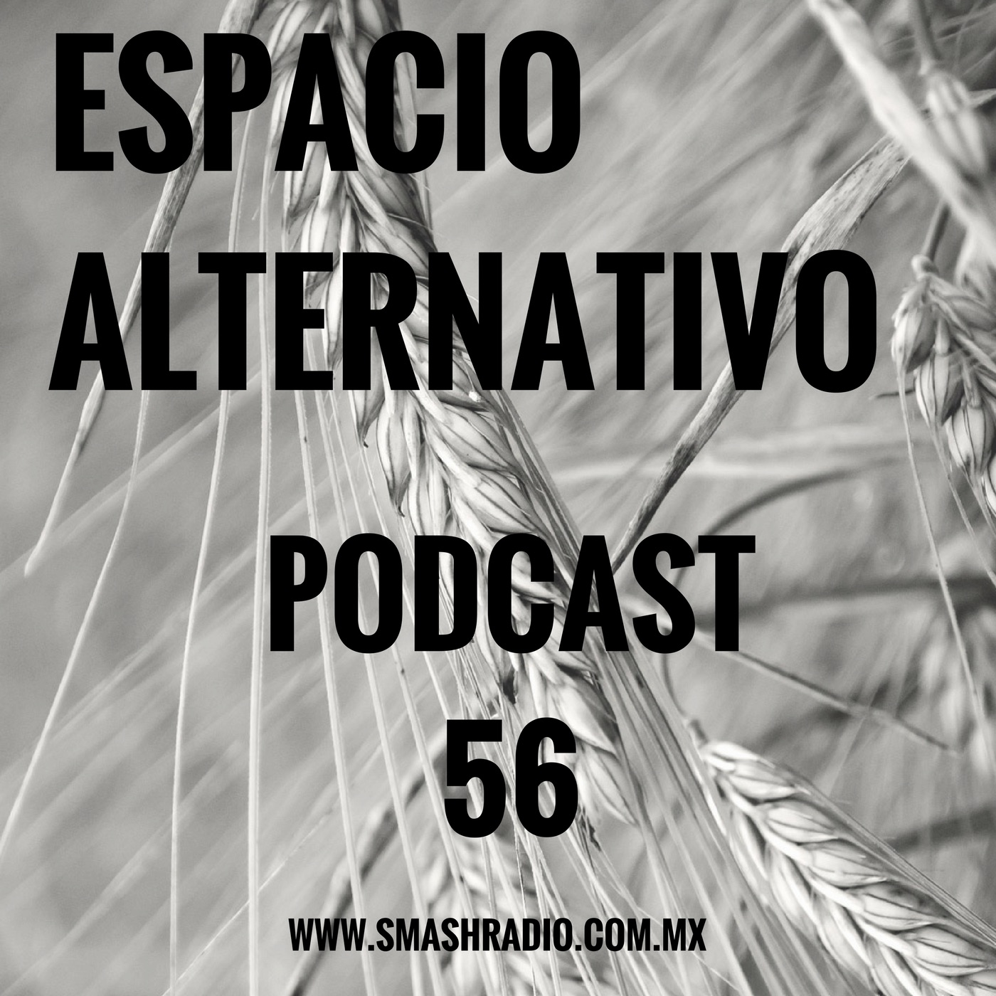 ESPACIO ALTERNATIVO_Podcast_56