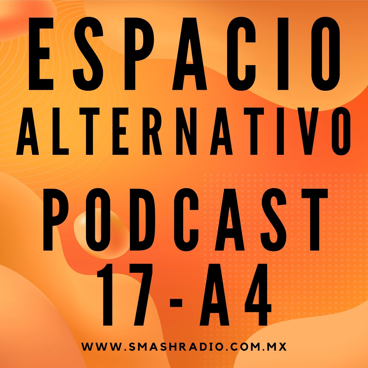 Espacio_Alternativo_Podcast_17-a4